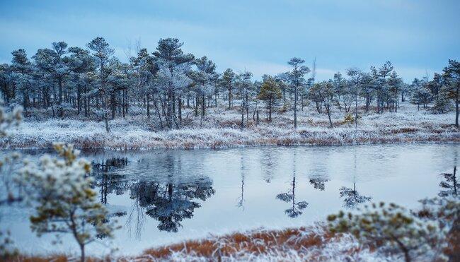 Silvester im Baltikum feiern