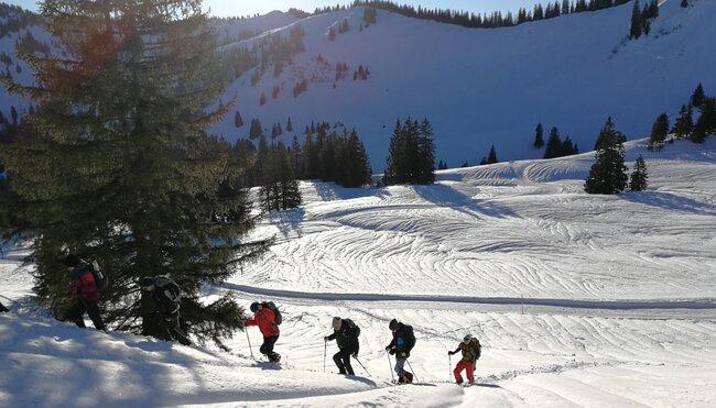 Schneeschuhwandern im alpinen Gelände - Einsteigerkurs im Allgäu