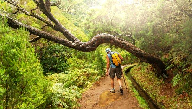Madeira Durchquerung
