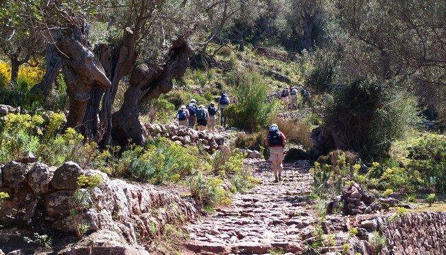 Mallorca gemütlich erwandern