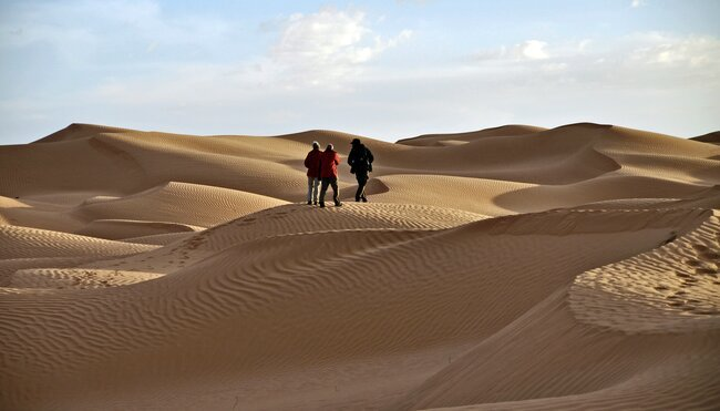 Kameltrekking durch die Sahara