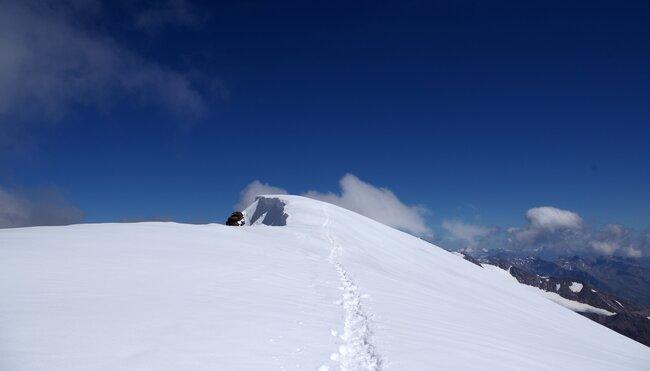 Hochtourenwoche in der Ortler-Gruppe mit Besteigung Cevedale (3.769 m)