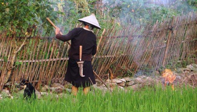 Vietnams authentischer Norden