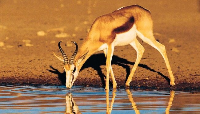 Namibia komfortabel erwandern