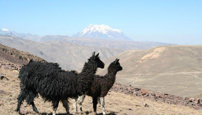 Chile,Bolivien, Peru - Von Atacama bis Machu Picchu