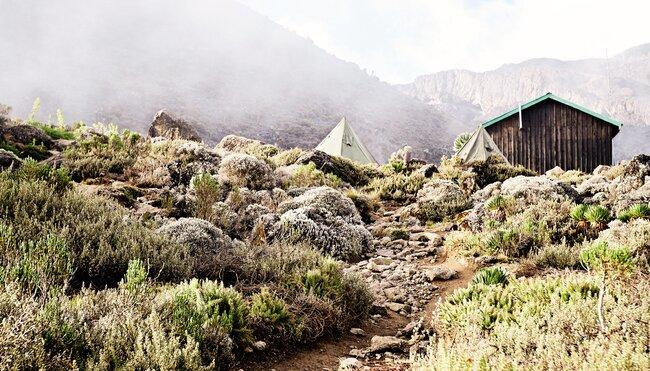 Kilimanjaro - Marangu Route mit Zusatztag