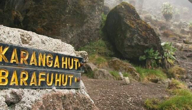 Kilimanjaro - Machame Route Zusatztag