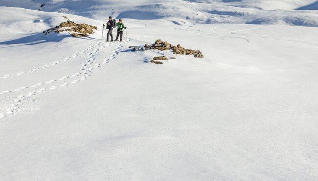 Schneeschuhwandern im Kleinwalsertal - Panoramawanderungen im Allgäu