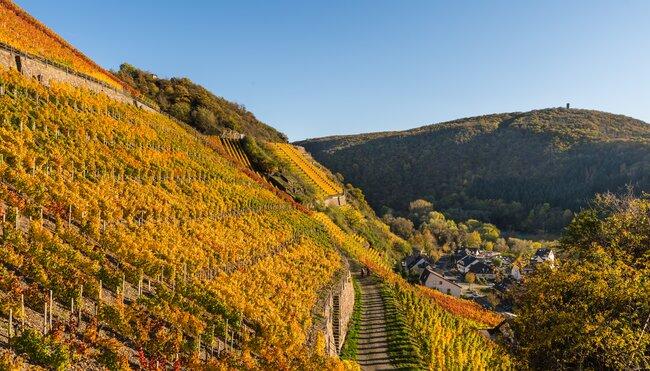 Zwischen Ahrsteig und Rheinsteig - das Ahrtal gemütlich erwandern