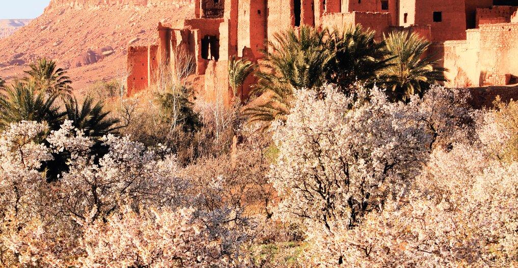 Marokko – Symphonie der Farben