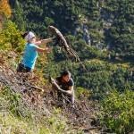 Teamwork ASI Nachhaltigkeits-Tag