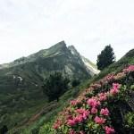 Alpenüberquerung vom Tegernsee nach Sterzing