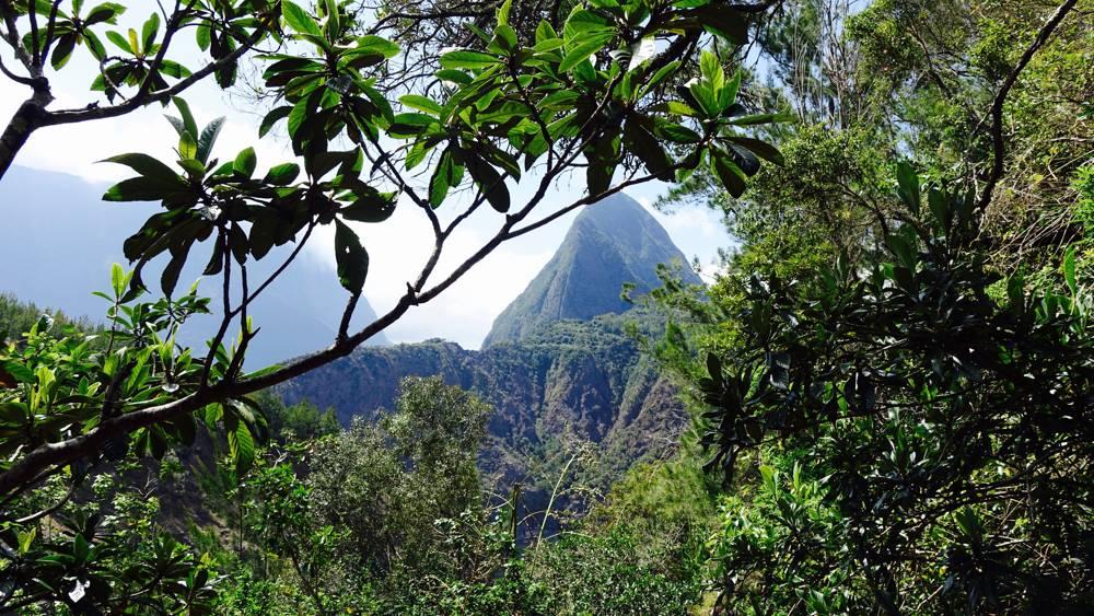 Grüne Gipfel La Réunion