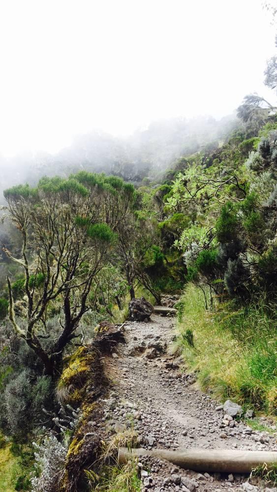 Wandern La Réunion