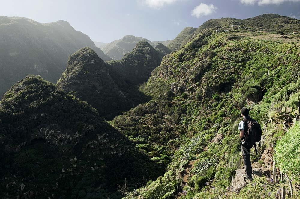 Üppige Vegetation auf La Palma