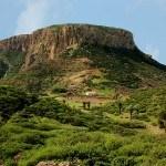 Grüne Insel La Gomera