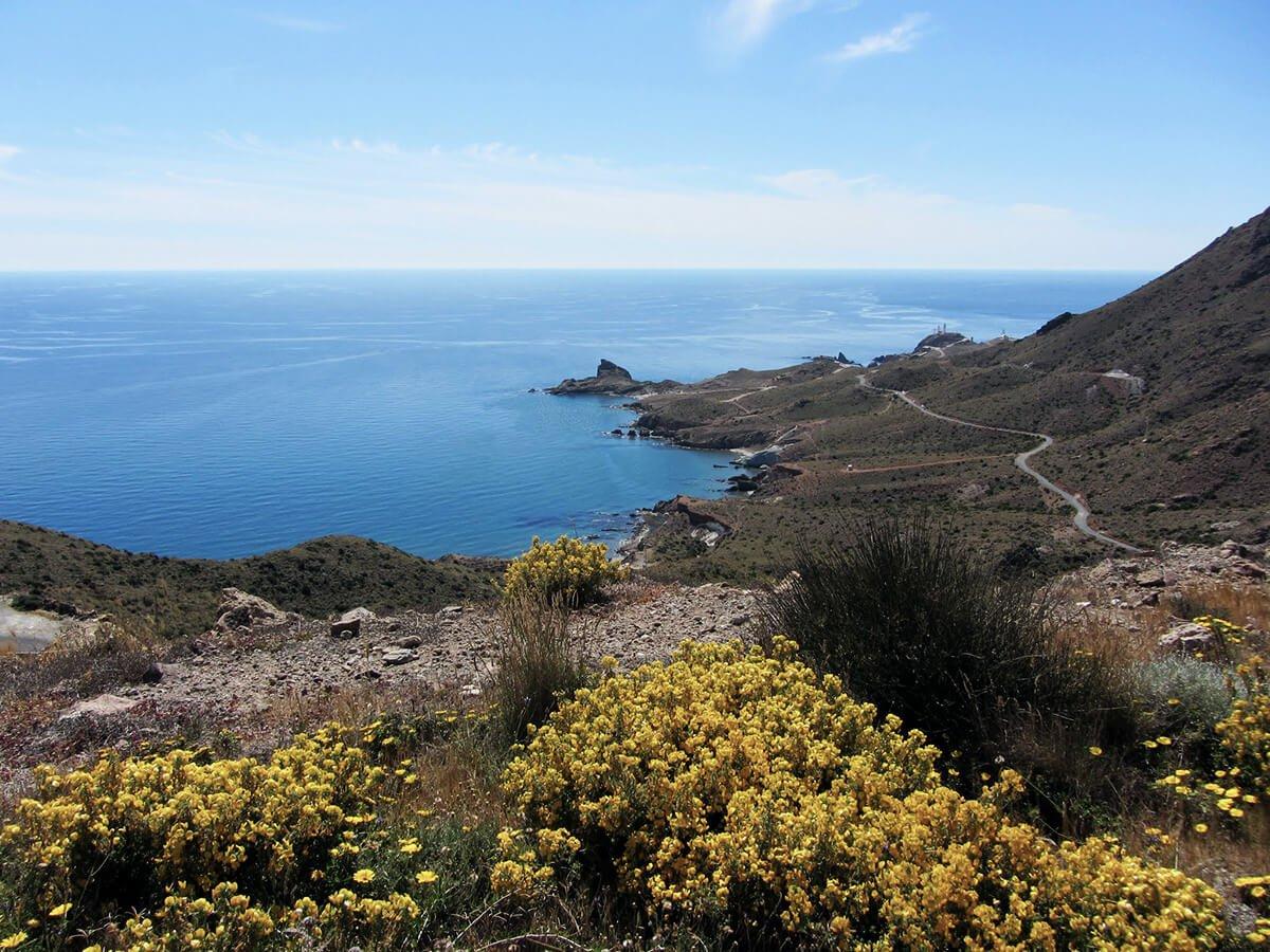 Felsen Andalusien