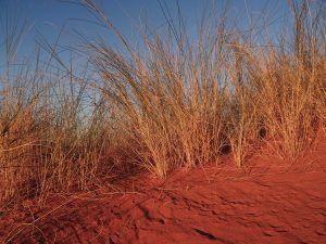 Namibia Wandern
