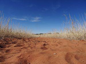Wandern Kalahari