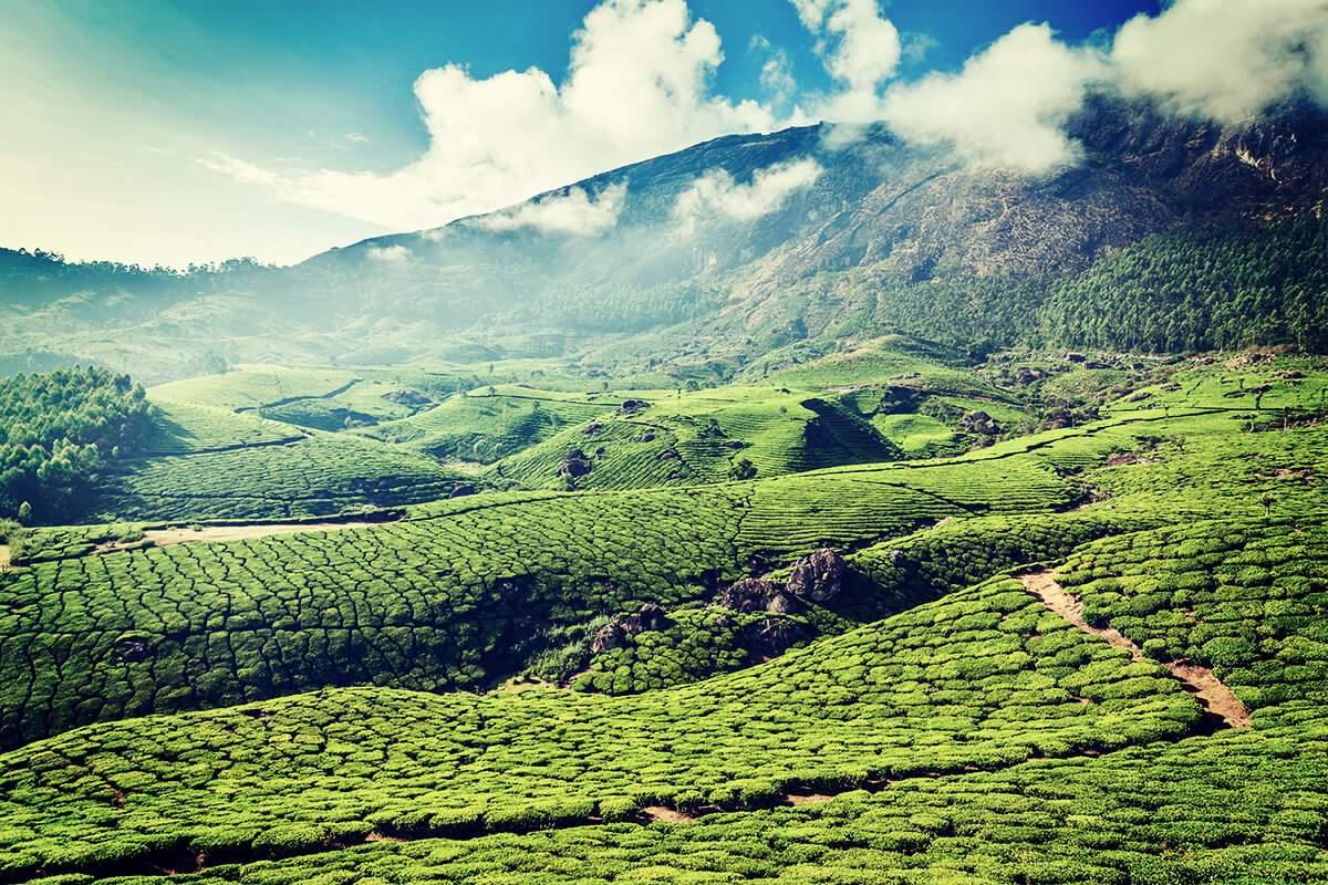 Natur Indien