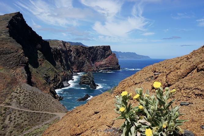 Kap Madeira