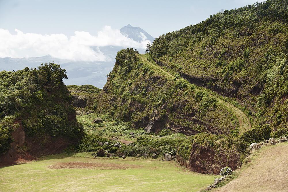 Das Grün auf der Insel Sao Jorge