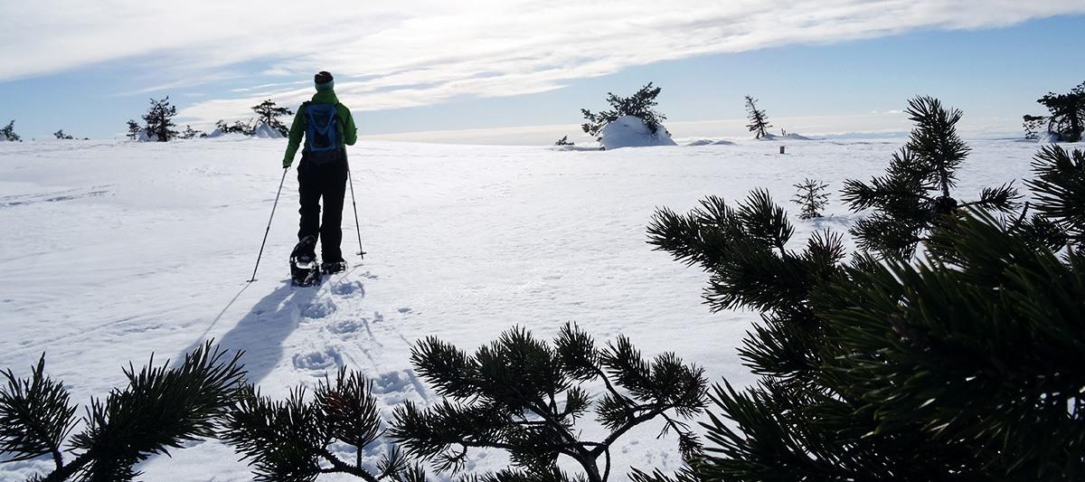 Schneeschuhwandern Finnland