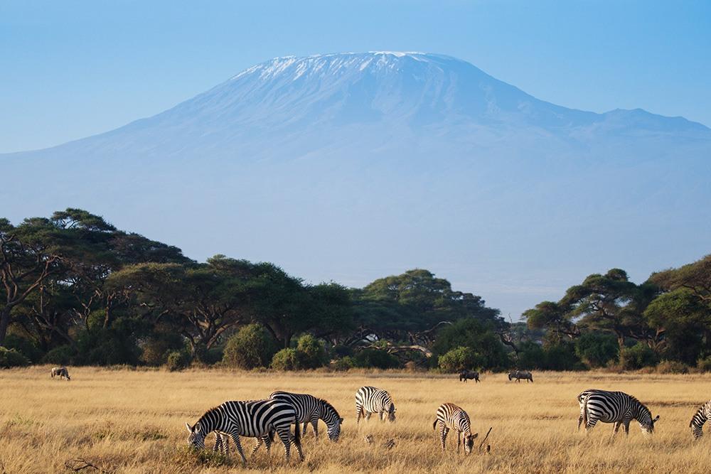 Wandern Kilimanjaro