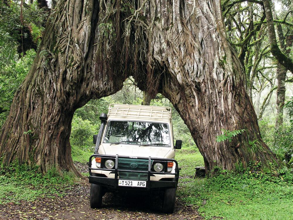 Wanderreise Tansania