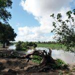 Natur Simbabwe