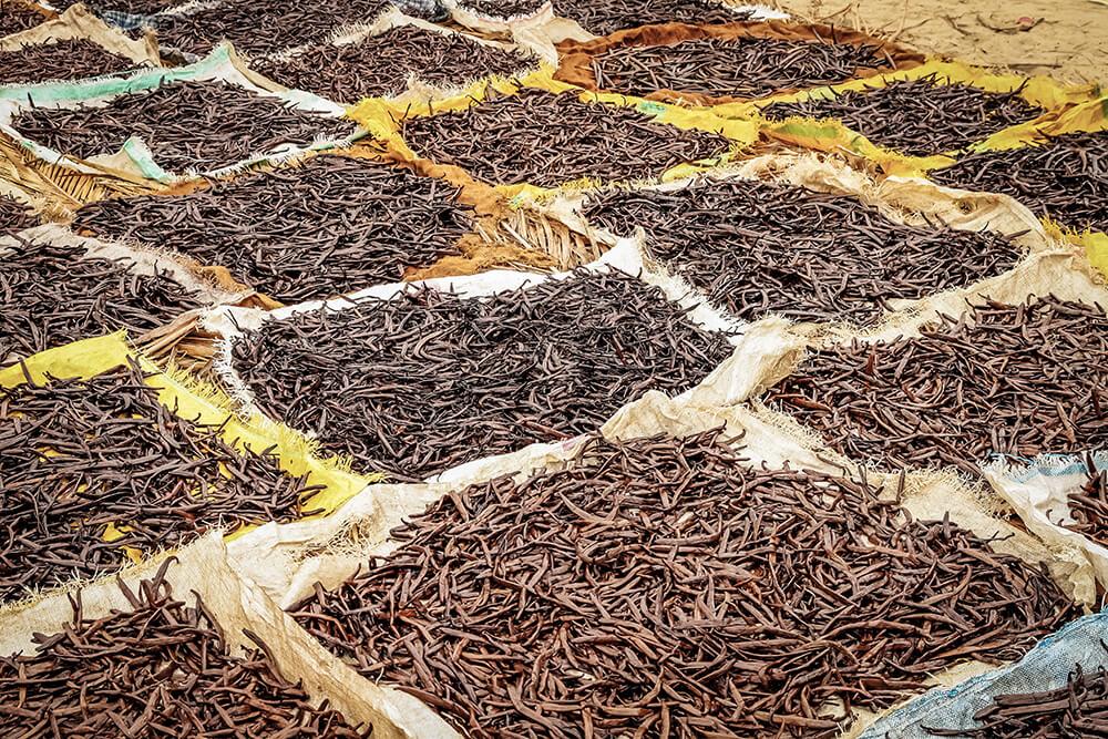 Vanille zählt zu den Hauptexportprodukten Madagaskars.