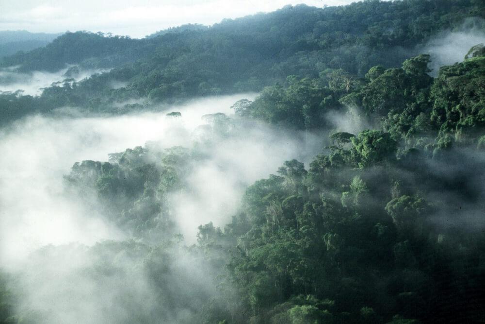 Monte Verde Costa Rica