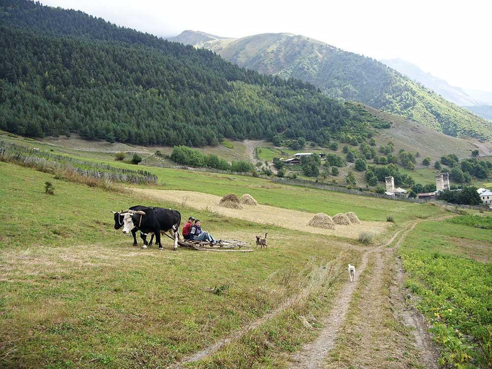 Das Dorfleben in Swanetien