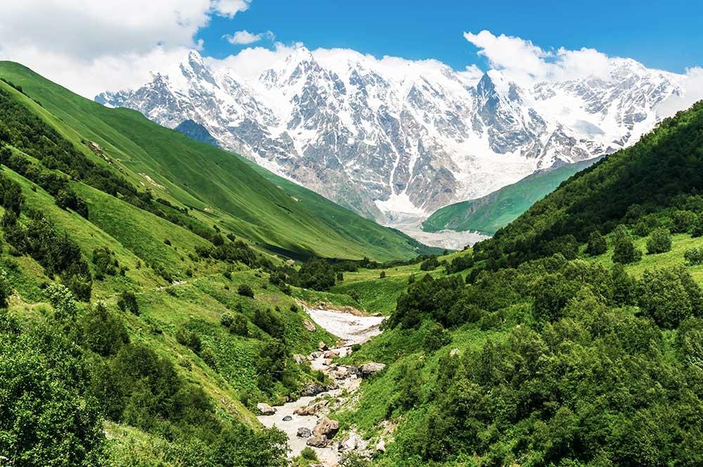 Saftiges Grün im Vordergrund mit schneebedeckten Bergen im Hintergrund - das gibt es in Georgien