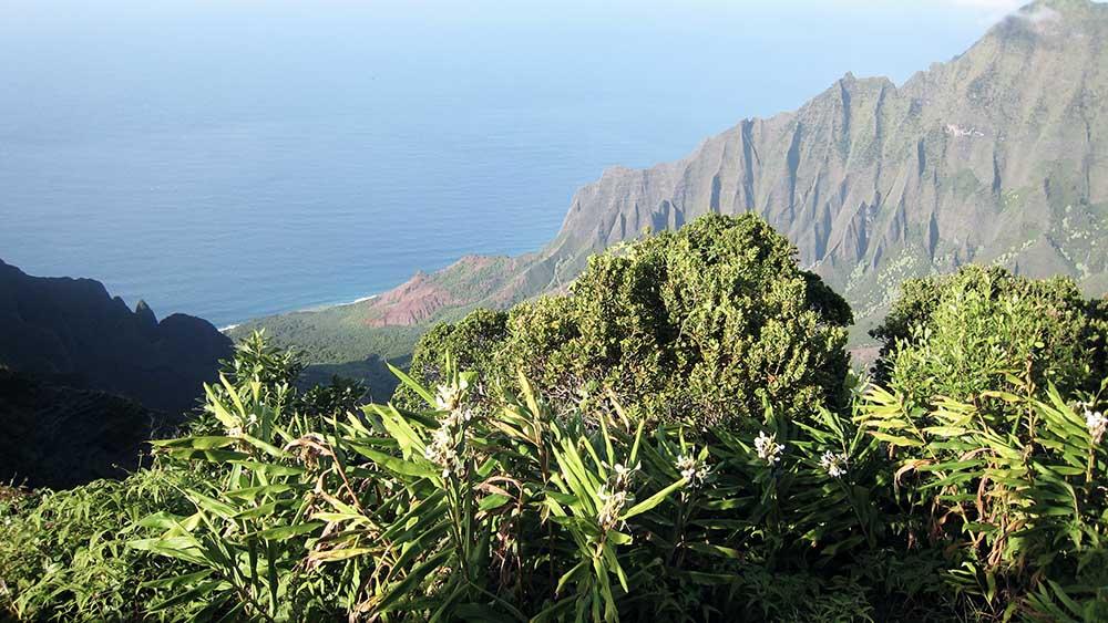 Hawaii_005