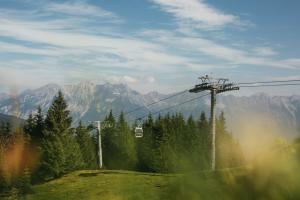 Seilbahn in grüner Waldlandschaft