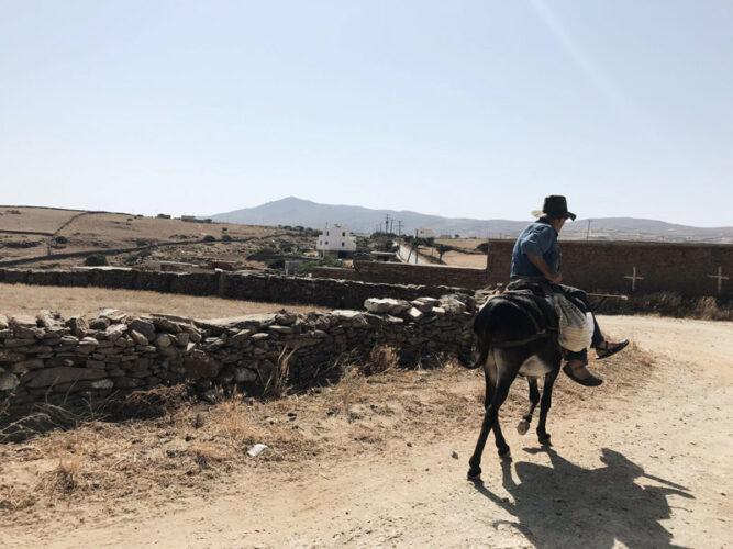 Lokaler Bauern auf Maultier reitet einen Schotterweg entlang.
