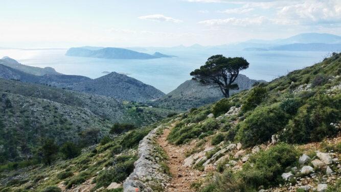Schmaler Wanderpfad in grüner und leicht felsiger Landschaft, ein Baum am Weg, Blick auf Meerlandschaft