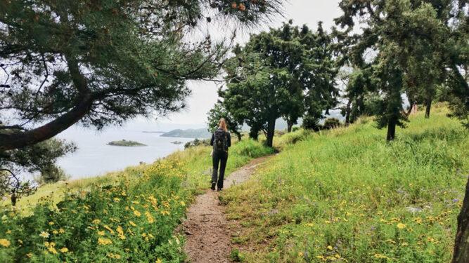 Wanderin inmitten grüner Wiesen mit gelben Blumen. Aussicht aufs Mert