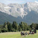 Eine Almwiese mit einer Wandergruppe. Hohe Berge im Hintergrund