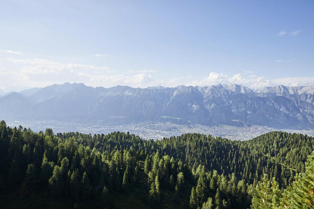 wälder mit stadt und berge im hintergrund