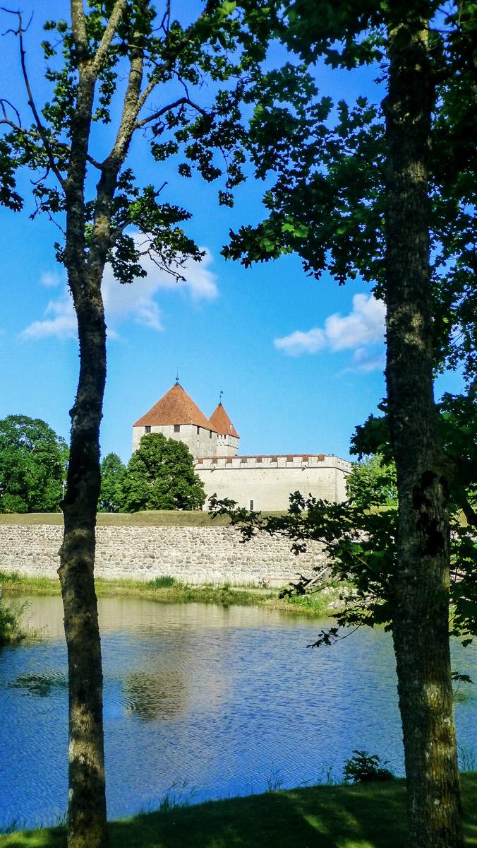 Burg und Fluss