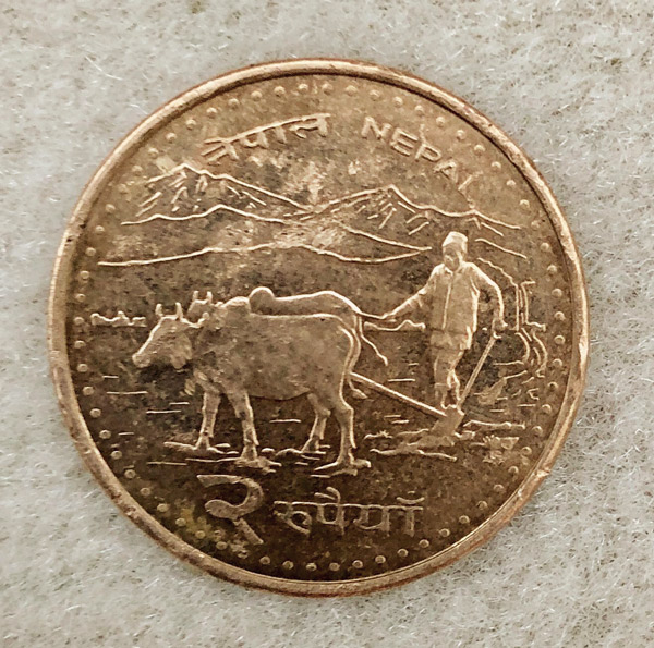 Bild einer Münze. Darauf sieht man einen Mann mit zwei vorgespannten Ochsen.