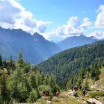 Blick von einer Lichtung auf Wälder im Gebirge. Einige Wanderer sind zu sehen