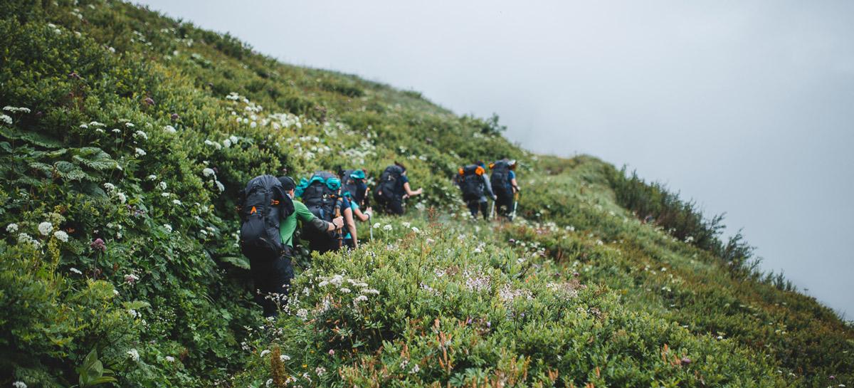 Wandergruppe von hinten, wandert durch Gebüsch