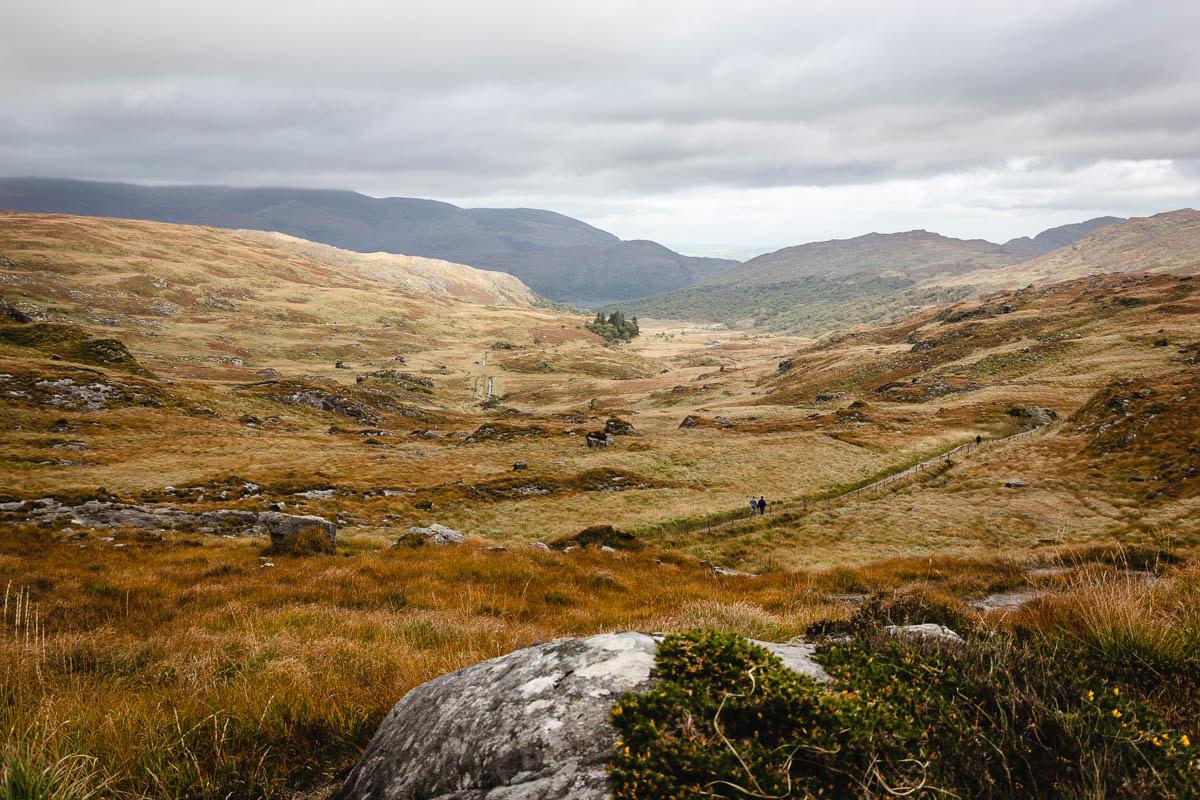 Der Herbst verwandelt die Landschaft Irlands in wunderschöne goldene Erdtöne