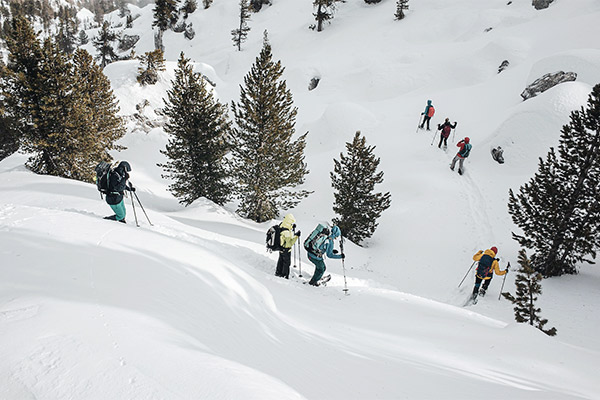 Abstieg durch Tannen, Dolomiten