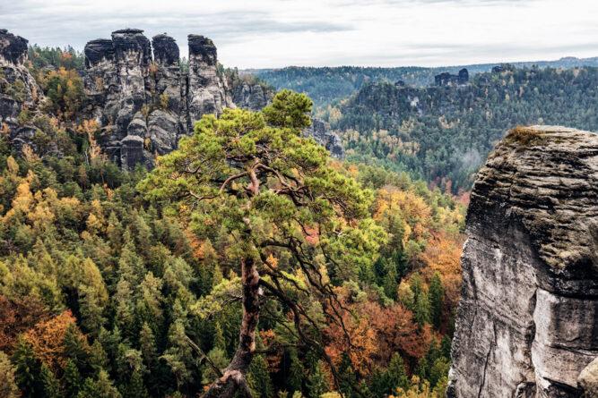 Die Bastei in der Sächsischen Schweiz, Deutschland.