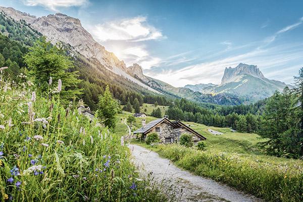 Berghütte hinter Blumen, Italien