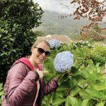 Blaue Blumen, Madeira